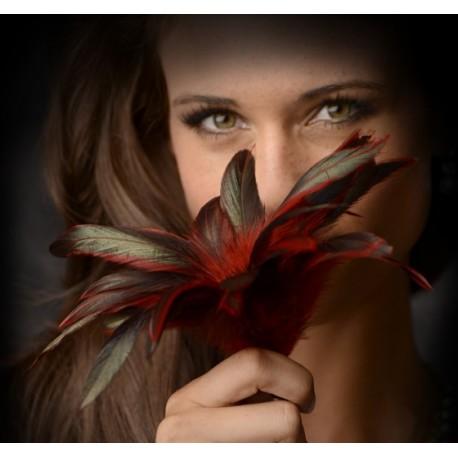 GreyGasms Scarlet Plume Feather Tickler